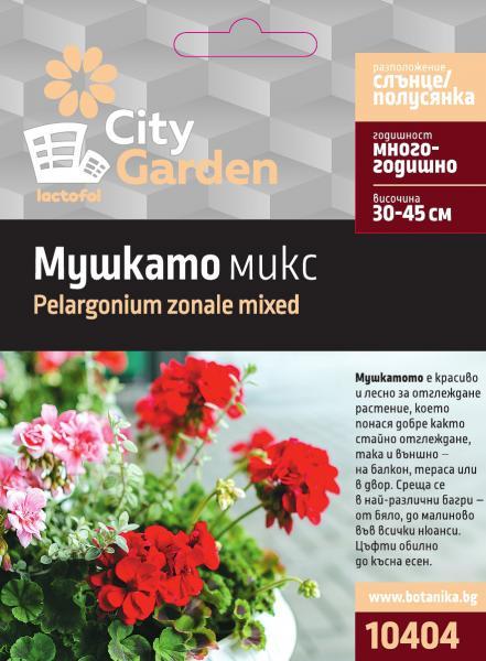 City garden семена мушкато микс