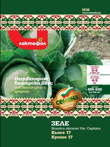 Български семена Зеле Кьосе 17