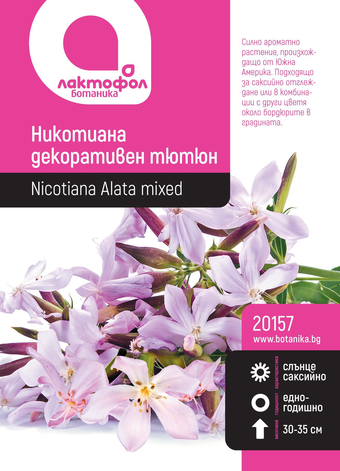 Никотиана декоративен тютюн