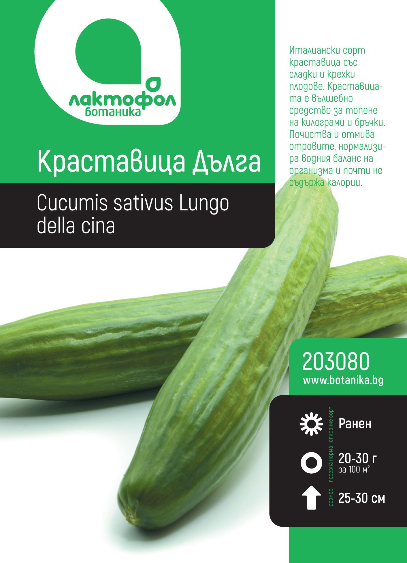 Краставица  Дълга