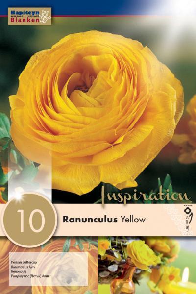 Ранункулус AVIV YELLOW 6/7 10бр.