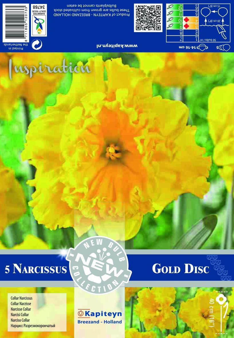 NEW BULB Нарцис Collar Gold Disc 14/16 5 бр.