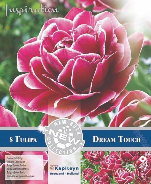 NEW BULB Лале Dream touch 11/+ 8бр.