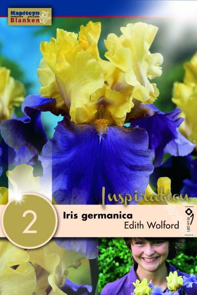 Ирис germanica Edith wolford 2бр.