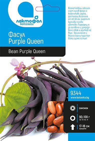 Фасул Purple Queen
