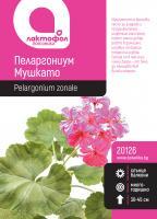 Пеларгониум / Мушкато