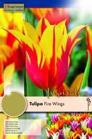 Лале LILY FLOWERED FIRE WINGS 12/+ 8бр.