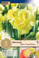 Нарцис YELLOW CHEERFULNESS 14/16 5бр.
