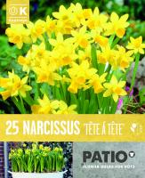 Балконски - Нарцис CYCLAMINEUS TETE A TETE 10-11 25 бр.