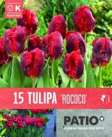 Балконски - Лале PARROT ROCOCO 11-12 15 бр.