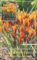 Минзухар Orange Monarch 5-7 10бр.
