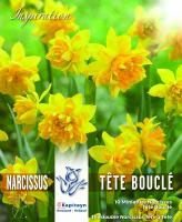 NEW 2018 Нарцис DOUBLE TETE BOUCLE 10/11 10 бр.