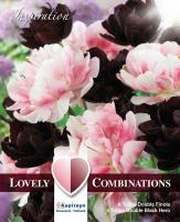 Комбинация лалета DOUBLE  black and pink 12бр.