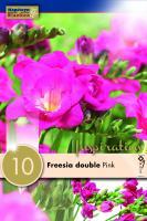 Фрезия двойна розова 10 бр.