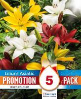 Промо Лилиум Asiatic Mixed Colours 5бр.