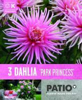 Балконски - Далия кактус Park Princess 3бр.