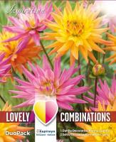 Комбинация декоративна Далия Karma розово/оранжево 3бр.