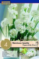 Нарцис PAPERWHITE ZIVA 15/16 4бр.