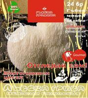 Мицелизирани пинове - Лъвска грива 24 бр.