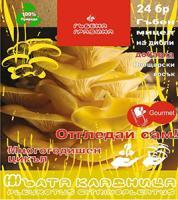 Мицелизирани пинове - Жълта кладница 24 бр