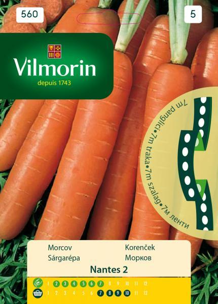Морков - Ленти Nantes 2